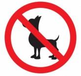Da proibição de animais em condomínios de apartamentos